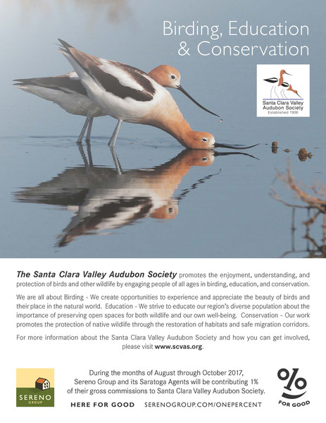 Santa Clara Valley Audubon Society